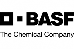 BASF_Group-01.png